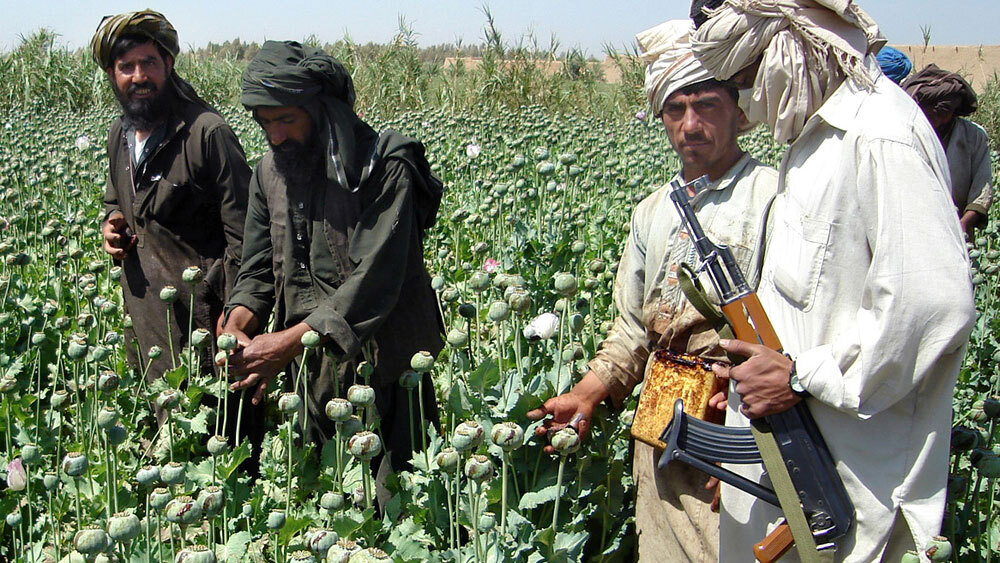 The Taliban Story: High on Drugs Economy (Part 9)